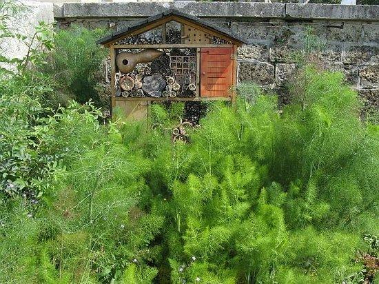 Le Potager du Roi:                   Gîte pour insectes...