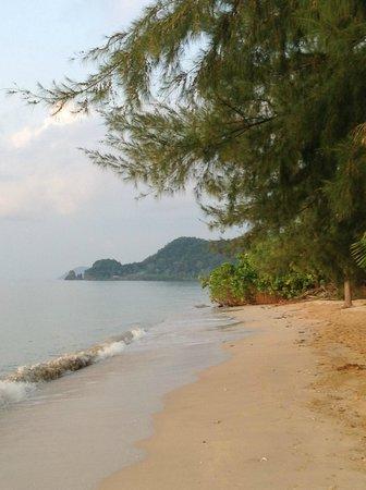 Big Easy:                   Skøn skøn strand som blev revet hver morgen