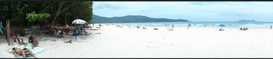 Lopes Mendes Beach: Panoramica