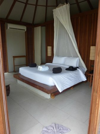 The Haad Tien Beach Resort:                   the room