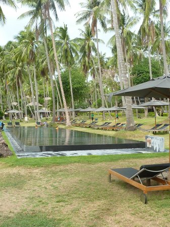 The Haad Tien Beach Resort:                   the pool