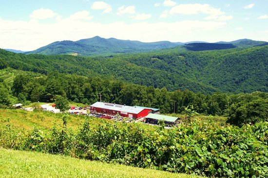Spruce Pine, Carolina del Norte:                   View of the Orchard from the Blue Ridge Parkway