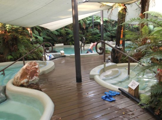 Rainforest Retreat:                   Franz Josef hot pools
