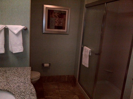 Hampton Inn Minneapolis/Shakopee :                   Spacious Bathroom