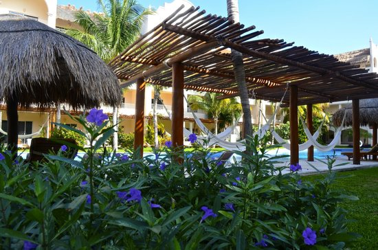 Hammocks near the pool - Photo de Excellence Riviera Cancun, Puerto ...