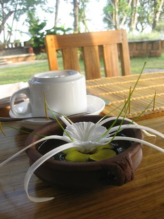 Punnamada Resort:                   Coffee and a lovely bloom