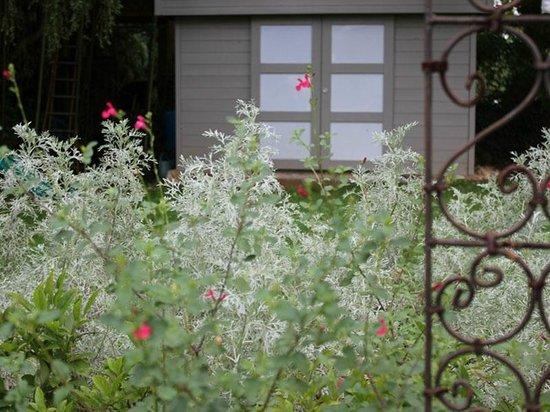 Gîte La Noyeraie : Jardin
