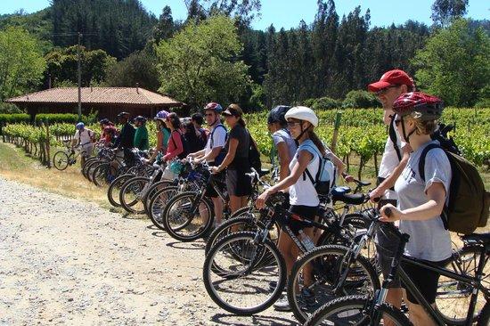 Paseos en Bicicleta Bike Tours