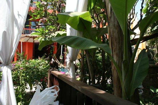 Golden Temple Hotel: Hotel Cabana