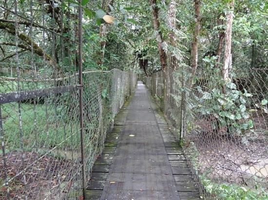 Jong's Crocodile Farm & Zoo: Jungle Walk