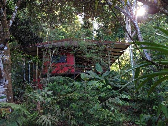 El Remanso Lodge: OSA Casa