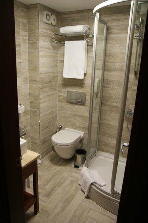 Hotel Polatdemir:                                     Salle de bains depuis la chambre                          