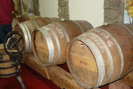 Agriturismo Fontanella:                   Weinfässer