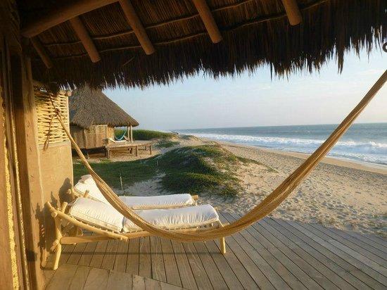 Hotelito Desconocido:                   View looking south off of our deck on El Valiente