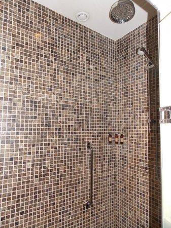 Lough Eske Castle, a Solis Hotel & Spa:                   Rainforest Shower