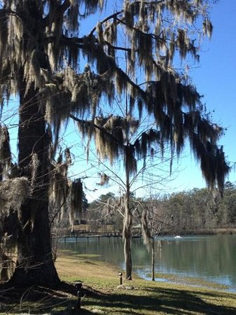 Staybridge Suites Tallahassee I-10 East:                   Beautiful lake setting.