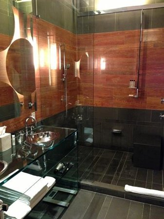Andaz 5th Avenue:                   shower