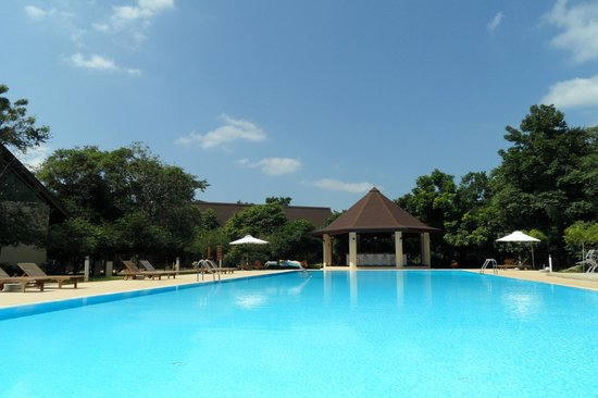 The Paradise Resort and Spa:                   pool area