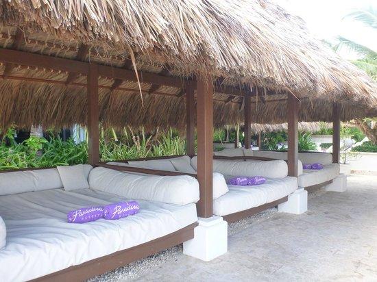 Paradisus Punta Cana:                   Près de la plage