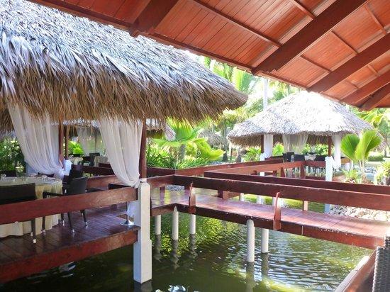 Paradisus Punta Cana Resort:                   Resto Aqua