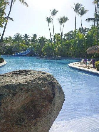 Paradisus Punta Cana:                   Piscine