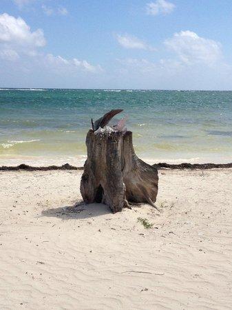Kabah na:                                     Playa