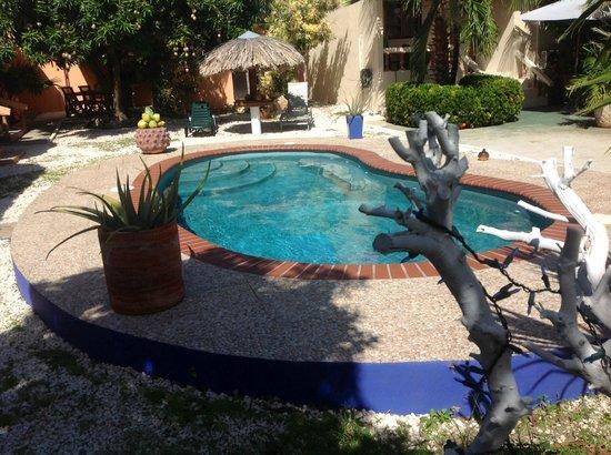 Villa Punta Salina: Pool View & Garden