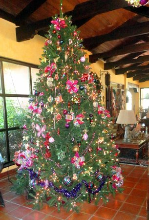 Hotel Atitlan:                   Christmas Tree