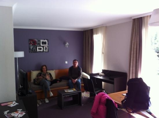 Adagio Paris Buttes Chaumont:                   sala do apartamento