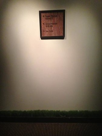 Glenn Hotel, Autograph Collection :                   fake grass along the hallways. very interesting touch!