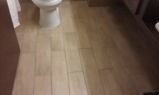 Holiday Inn Express & Suites Huntsville Airport:                   Love the tile