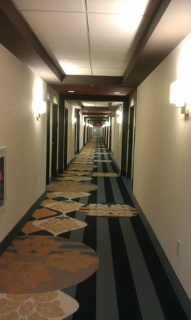 Holiday Inn Express & Suites Huntsville Airport:                   Unique hallway