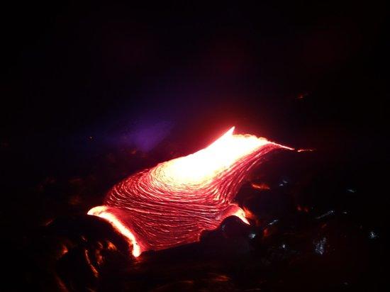 Kalapana Cultural Tours: Lava flow on ground