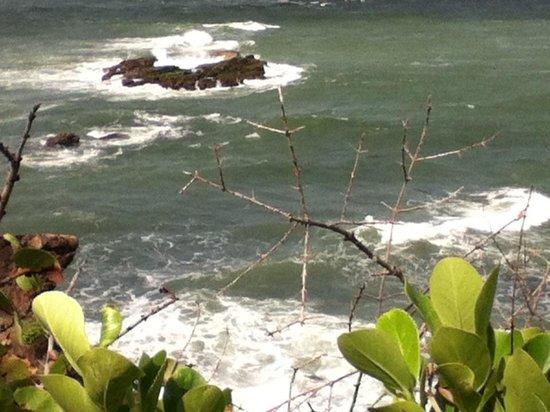 Maracas Bay:                   Toco ,Trinidad