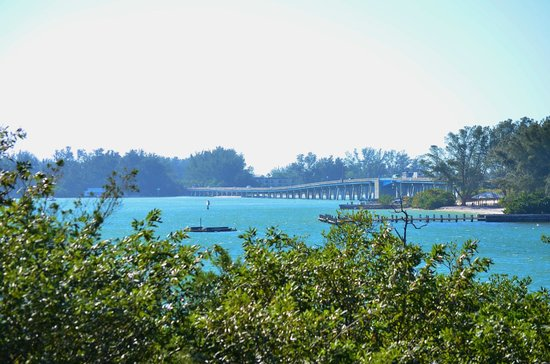 Coquina Baywalk:                   view from the hill