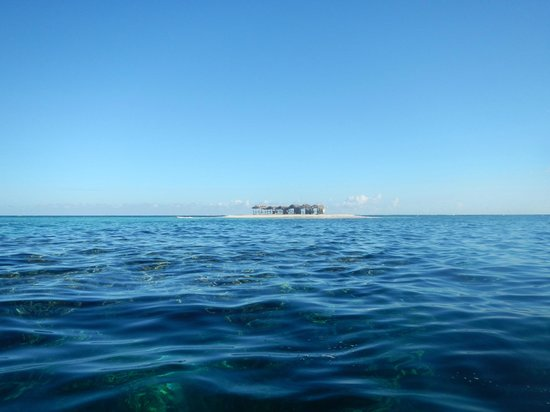 Paradise Island & The Mangroves (Cayo Arena): our first glimpse of the island from the boat