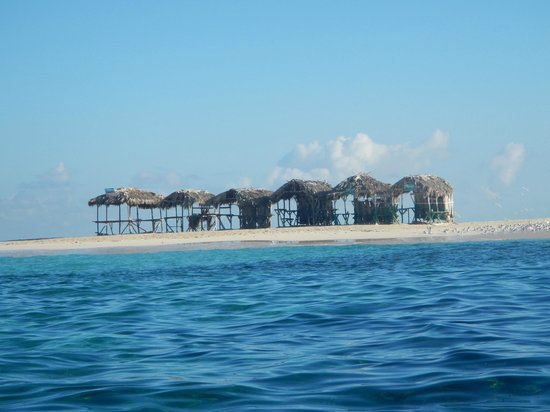 Paradise Island & The Mangroves (Cayo Arena): coming to the island
