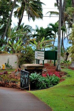 Beach Allerton House Picture Of National Tropical Botanical Garden P