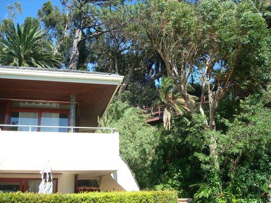 Lezard Bleu:                   Blick auf den Corner Room und hinauf zum Baumhaus