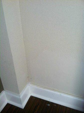 Holiday Inn Macon North: Beat up walls