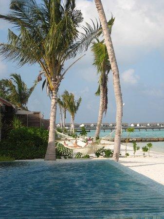 ذا ريزيدنس جزر المالديف: Ocean side