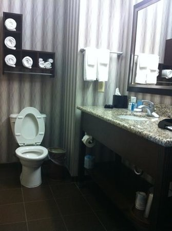 Hampton Inn Jackson- Flowood: bathroom