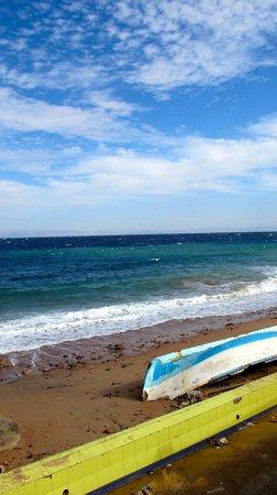 Dahab Paradise:                   The Red Sea