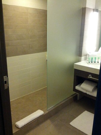 The Palms Casino Hotel: Shower