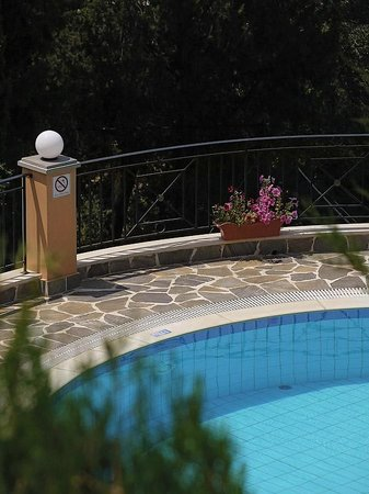 Dina's Paradise Hotel & Apartments:                                     pool...