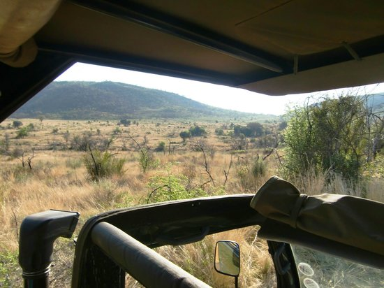 Bakubung Bush Lodge:                   Uitzicht vanuit de safariwagen op Pilanusberg National Park