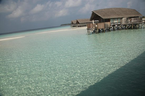 COMO Cocoa Island: One bedroom villa