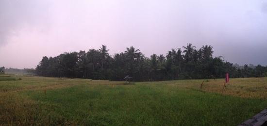 the view from our Villa and most of Mandala Desa