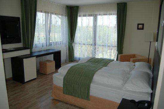 Hotel Aristocratis:                   Room