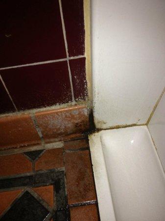 Blue Bell Lodge:                   spotless urinals